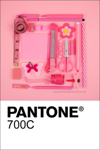 700C-Elinvernaderocreativo